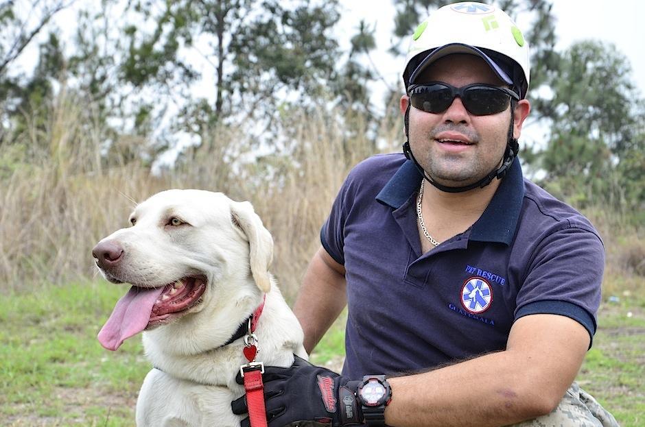 Drago es un Labrador Retriver rescatado por Mascotas X Amor. (Foto: Selene Mejía/Soy502)