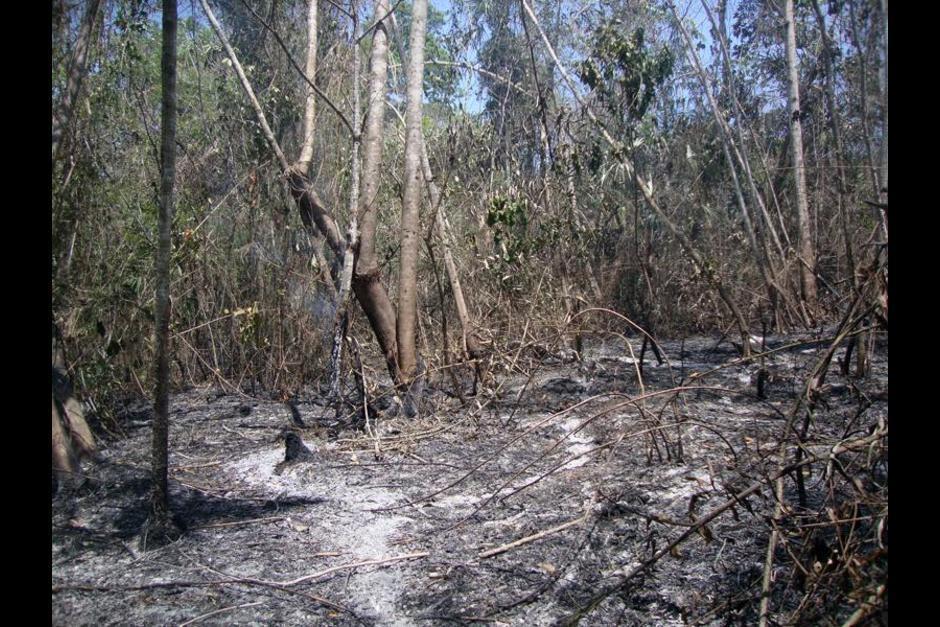 A esta fecha en 2015 se habían registrado 37 incendios. (Foto: Facebook, Proyecto Regional Arqueológico La Corona)