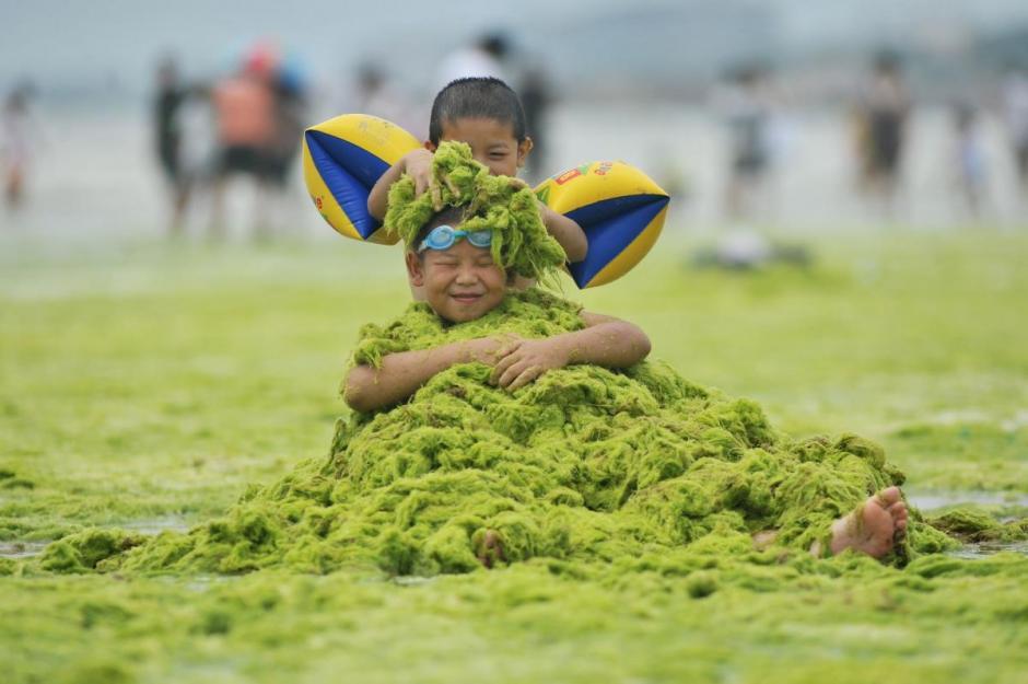 Hasta el momento, los científicos no han afirmado si las algas son dañinas a las personas que han tenido contacto con ellas. (Foto: AFP)