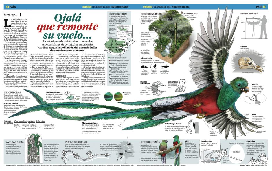 El reportaje sobre el quetzal enorgullece a los diseñadores nacionales. (Foto: Nuestro Diario)