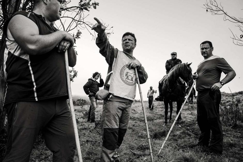 Los encargados de cortarle las crines a los caballos se denominanAloitador. (Foto: Javier Arcenillas)