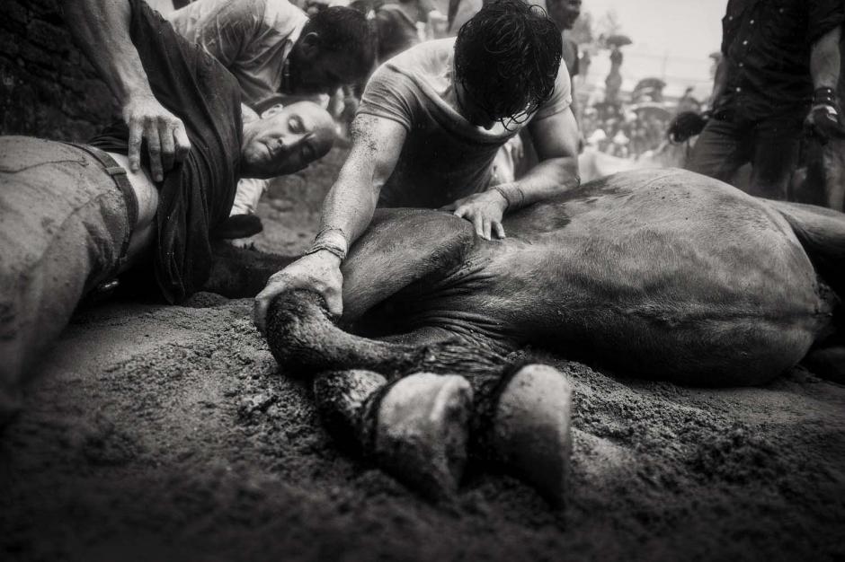 Los caballos son liberados luego de realizar la tradición. (Foto: Javier Arcenillas)