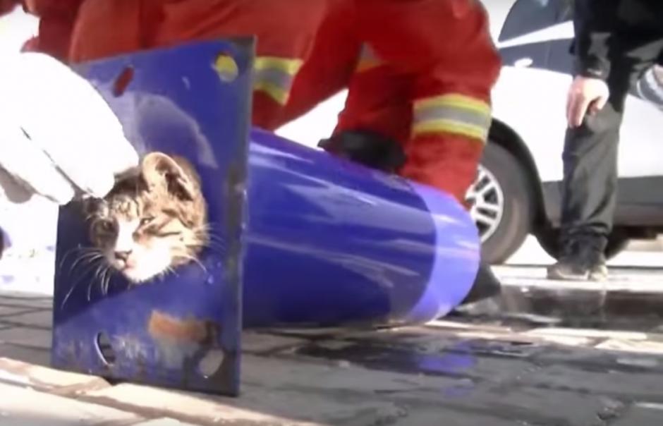 Con el tubo cortado, fue más fácil el trabajo para los rescatistas. (Imagen: captura de YouTube)