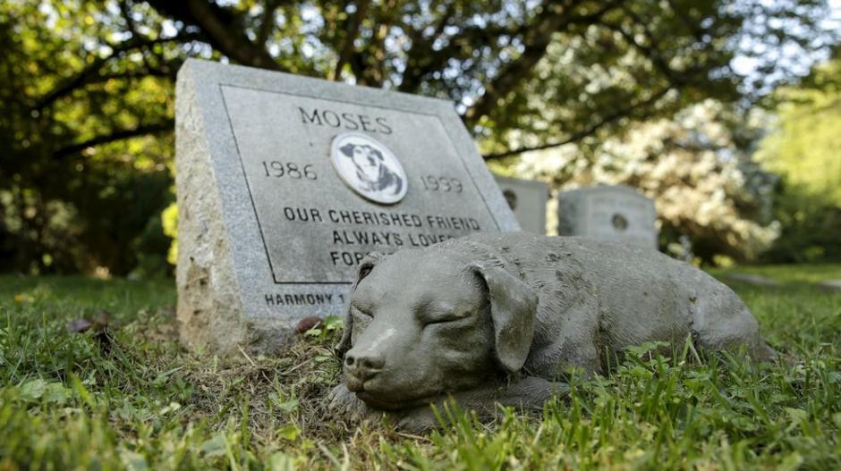 Los restos de las mascotas podrán descansar junto a los de sus dueños