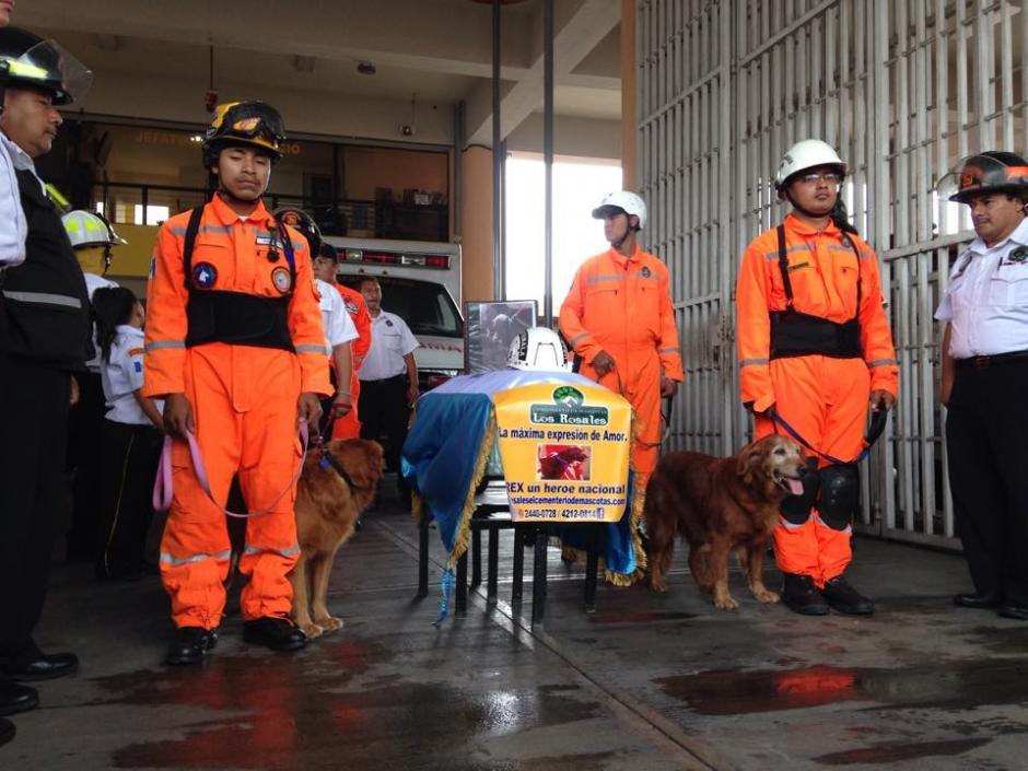 """El Cuerpo de Bomberos Voluntarios rindió honores a """"Rex"""", el primer perro de laPatrulla Canina. (Foto: Fredy Hernández/Soy502)"""