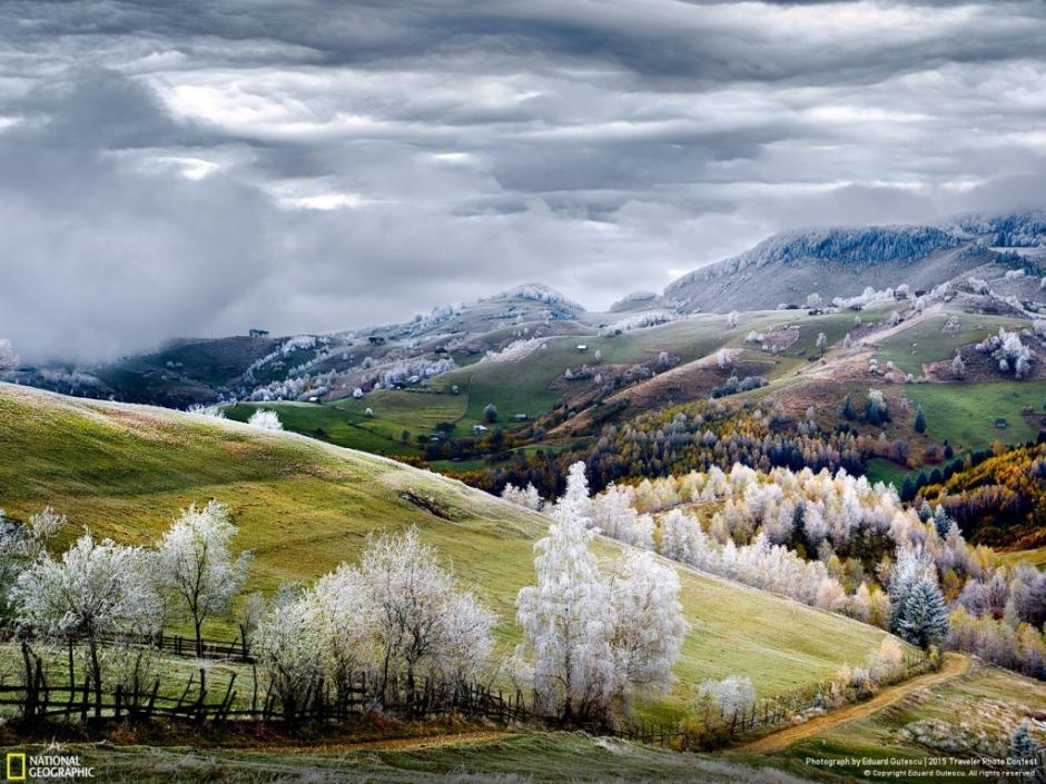 La tierra de los cuentos de hadas, este bosque esta ubicado en la región de Pestera, Rumania. (Foto: Eduard Gutescu/National Geographic)
