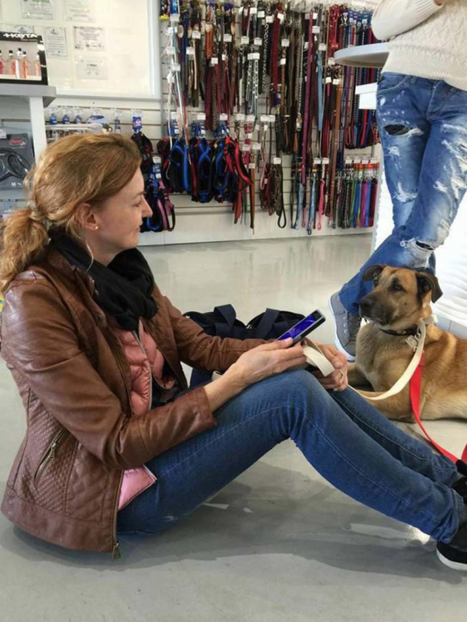 El perro la acompañaba a todas partes durante sus viajes a Buenos Aires, Argentina. (Foto: Facebook/Olivia Sievers)
