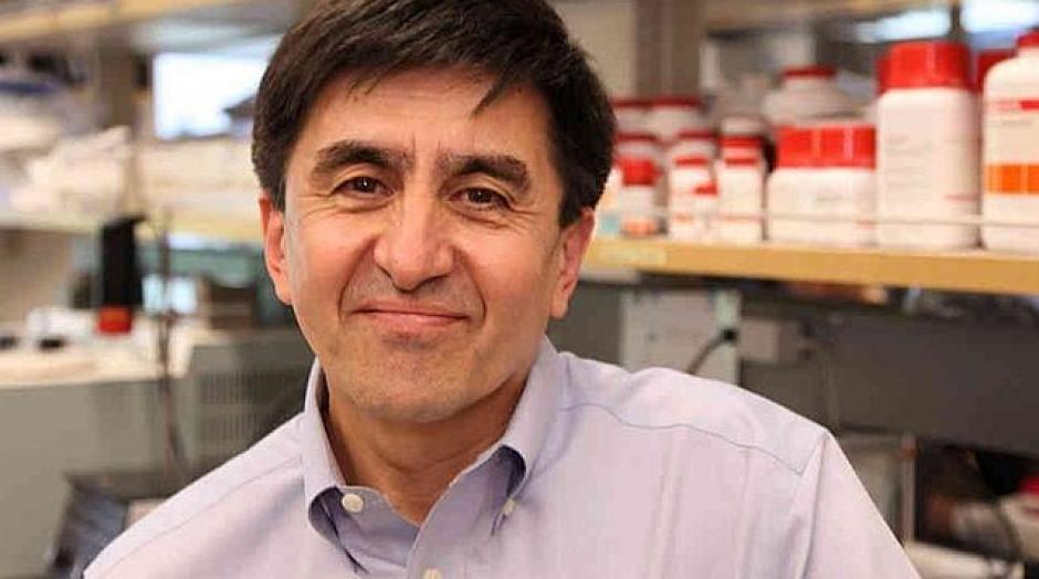 El biólogo Shoukhrat Mitalipov, de la Oregon Healt & Sciencie University, logró con su equipo clonar embriones humanos, para obtener de ellos células madre con fines terapéuticos. Esto podría ayudar a combatir en el futuro males como el Parkinson o la esclerosis múltiple. (Foto: Oshu Photos)