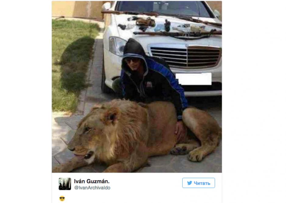 """Iván Archivaldo presume un león que aparentemente vive en una de las casas del """"Chapo"""". (Foto: Twitter)"""