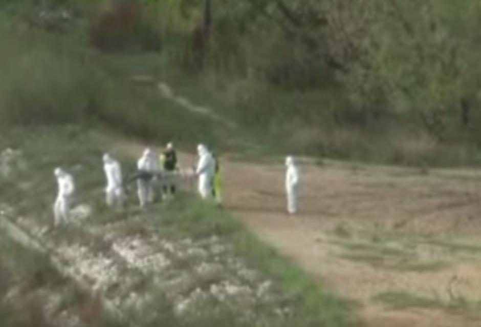Una supuesta sirena fue rescatada de las costas de Polonia