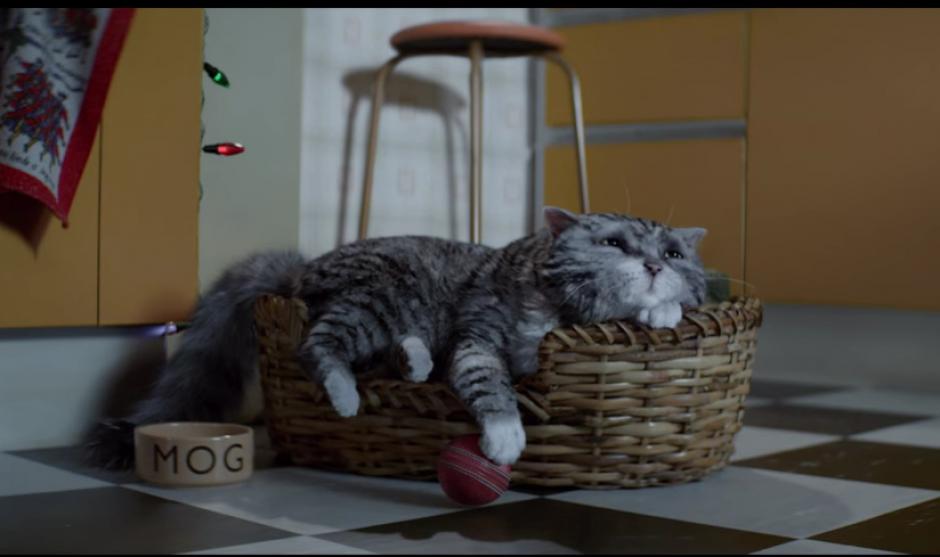 El Mog dormía tranquilamente, pero un sueño provoco que moviera su cola sin parar. (Foto: YouTube/Sainsbury's)
