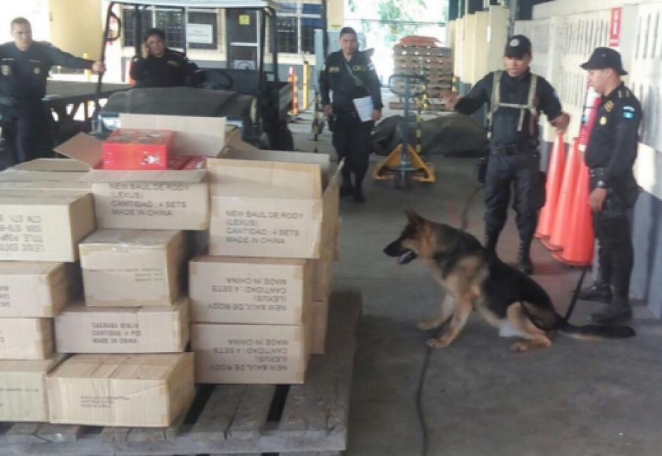 El perro brindó servicio policial durante ocho años en la Policía Nacional Civil. (Foto: Mingob)