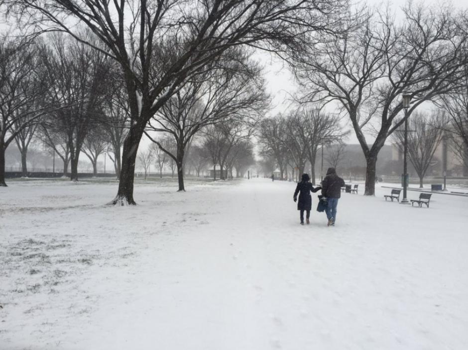 Lor principales parques en la costa este de Estados Unidos están congelados. (Foto: EFE)