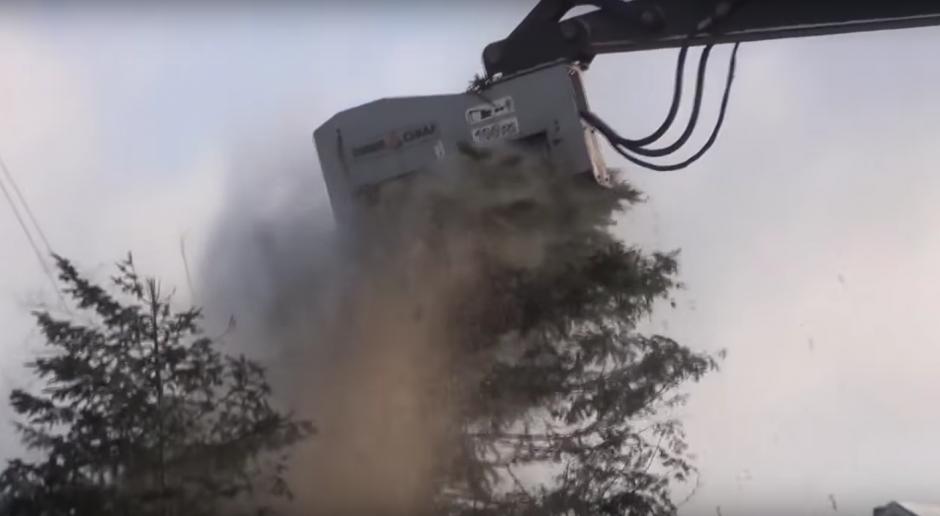 La impresionante armonía de la maquina para derribar un árbol. (Imagen: Captura de YouTube)
