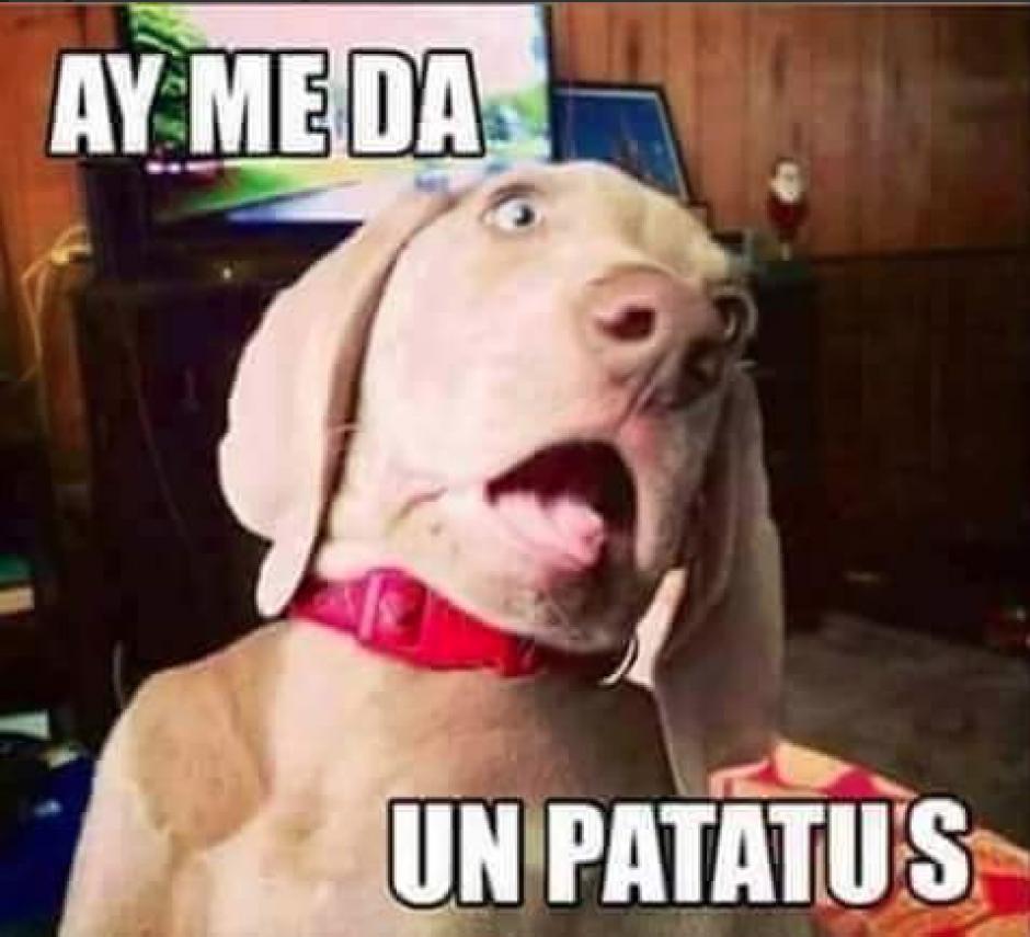 Los memes se divierten imitando el desmayo de uno de los abogados del Caso La Línea.