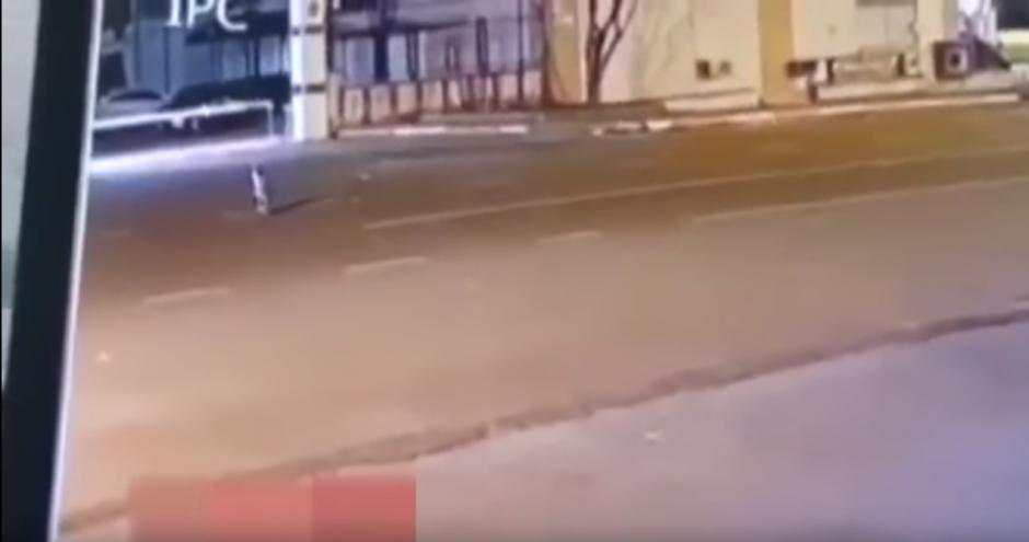 Una pequeña criatura camina por las calles. (Imagen: Mundo Esotérico y Paranormal)