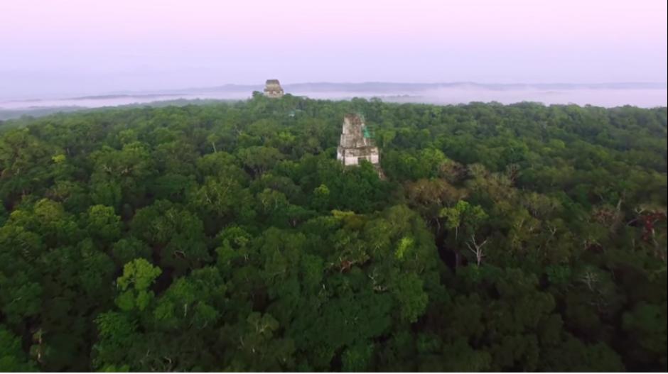 El documental habla sobre los efectos que tiene la deforestación en los bosques de Guatemala. (Captura YouTube)