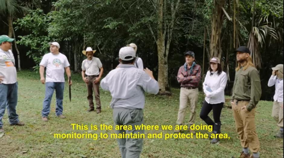 La comitiva se informa del trabajo que hace la organización por la preservación de los bosques. (Captura YouTube)