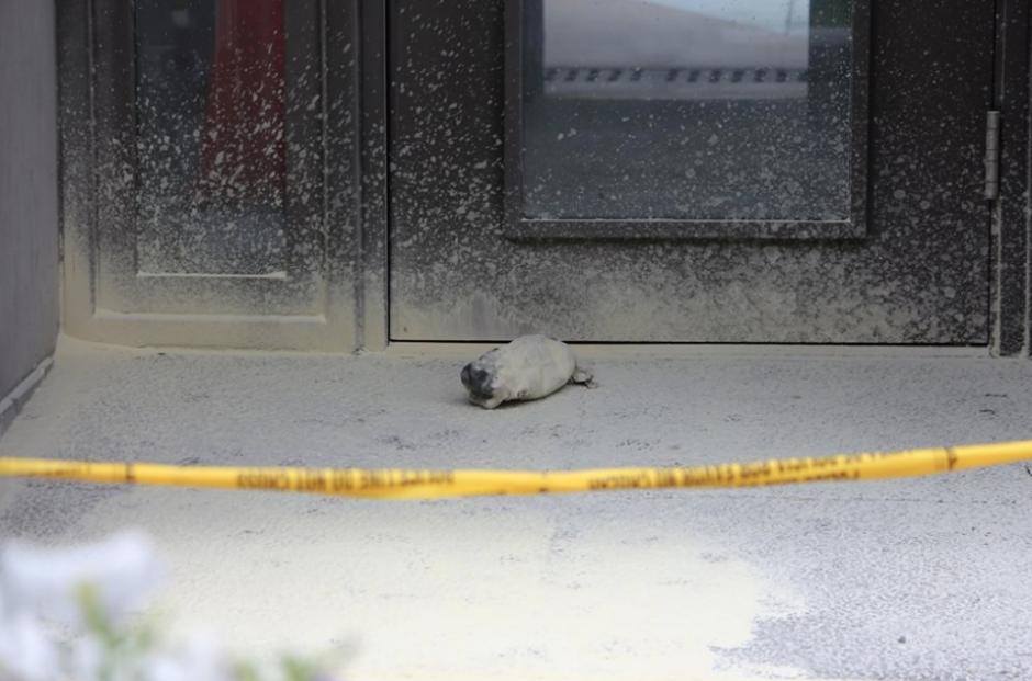 La unidad antiexplosivos de la PNC llegó al lugar para evaluar la supuesta bomba. (Foto: PNC)