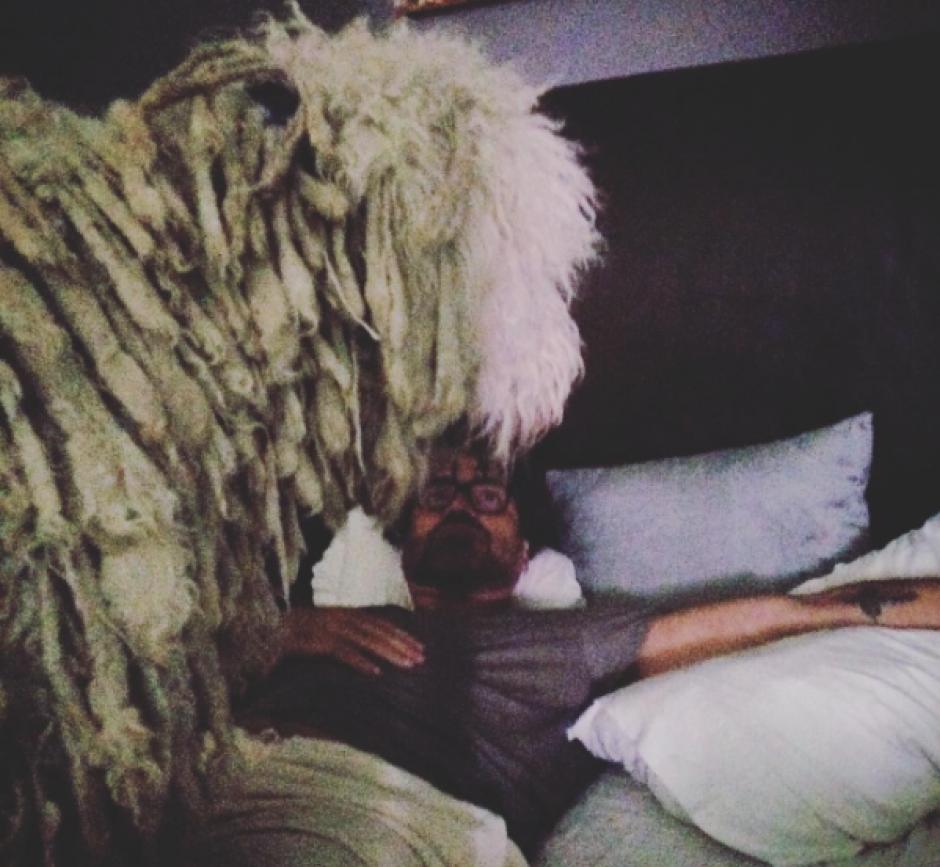 """Kush es una de sus mascotas y fue la responsable de la lesión al """"Potrillo"""" (Foto: Instagram)"""
