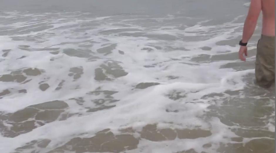 Ahí fue cuando se dieron cuenta que se trataba de un delfín varado en la orilla.  (Foto: Captura de Pantalla)
