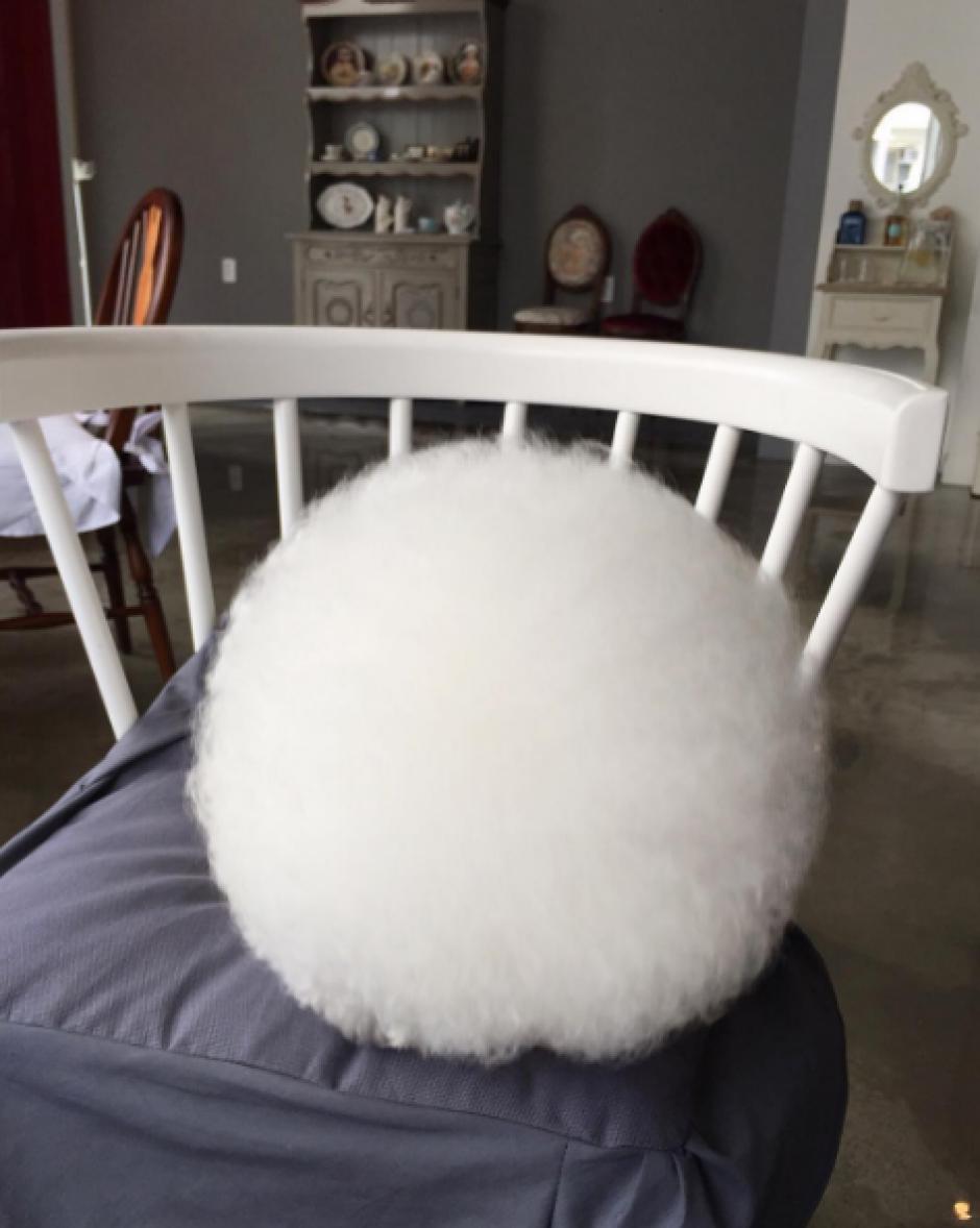 Cuando Tori duerme parece una bola de algodón por su peculiar corte de pelo. (Foto: Instagram)