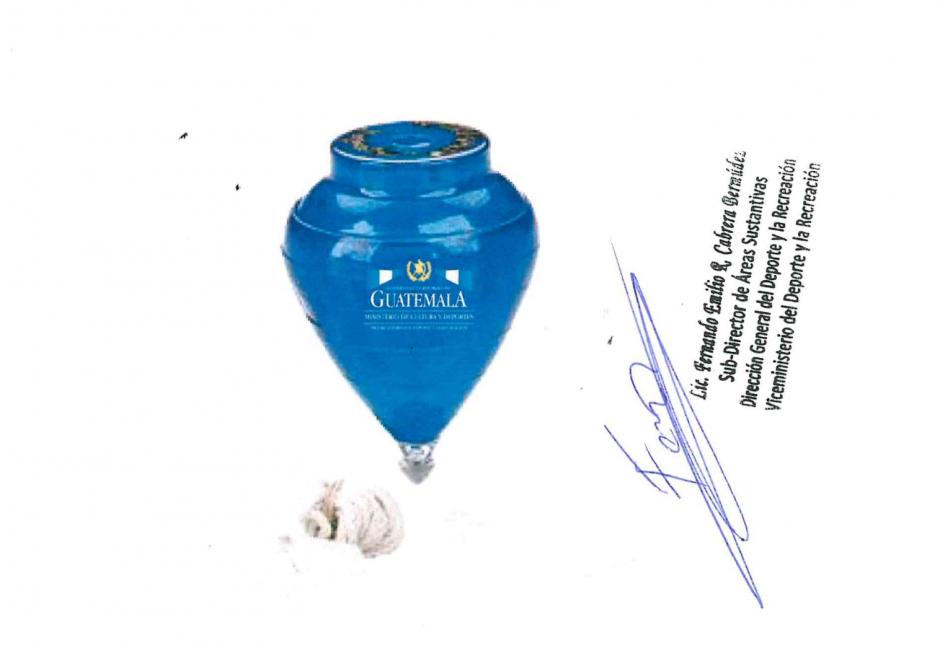 Este es el diseño del trompo registrado en el portal Guatecompras.