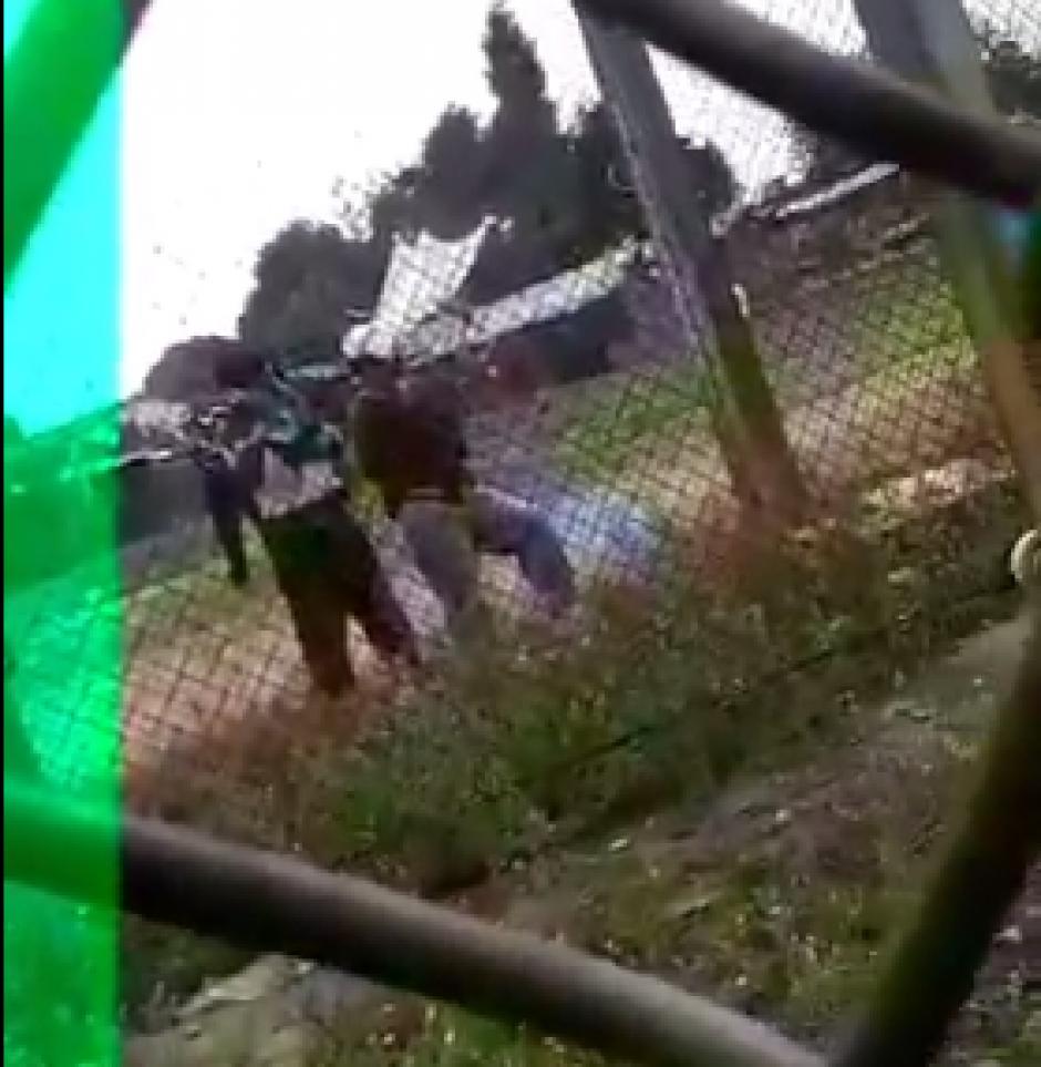Autoridades del Sistema Penitenciario ya analizan las imágenes. (Foto: Captura de video de @ErickColop)