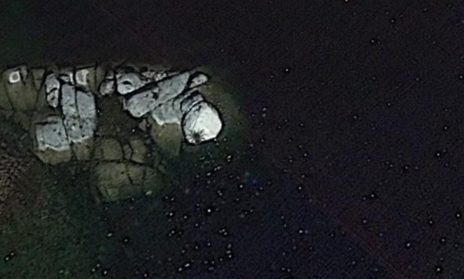 La imagen muestra una confusa silueta que muchos comparan con la de una araña gigante. (Imagen: Captura de pantalla)