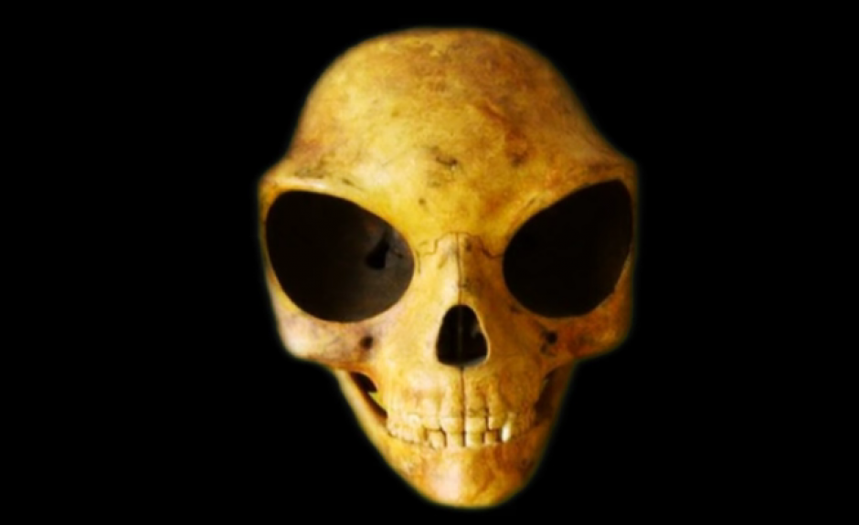El extraño cráneo fue encontrada en una isla danesa. (Imagen: Captura de pantalla)
