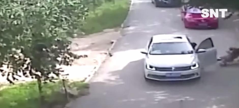 La arrastra varios metros alejada del vehículo. (Foto: Captura YouTube)
