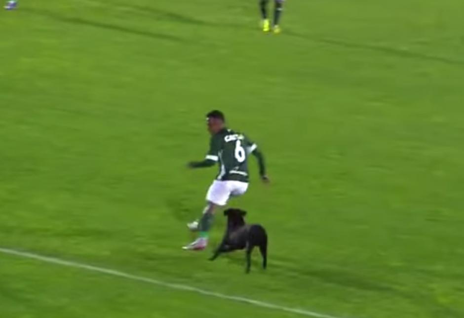 El jugador que huyó se llama Juninho. (Imagen: Captura de pantalla)