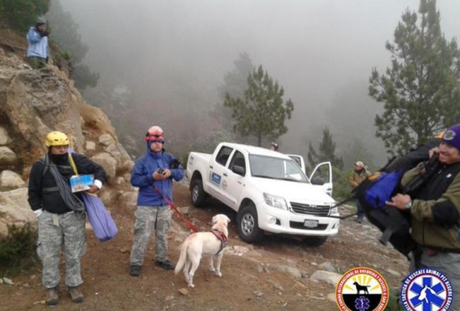 Drago fue una pieza importante que ayudó a rescatar al montañista Ariel Rodríguez, quien estaba perdido en el Tajumulco. (Foto: K-SAR Guatemala)