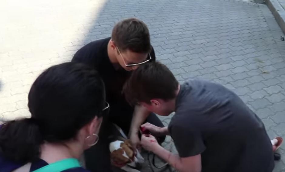 Varias personas llegaron a ayudar a la aterrorizada mujer. (Imagen: Captura de pantalla)