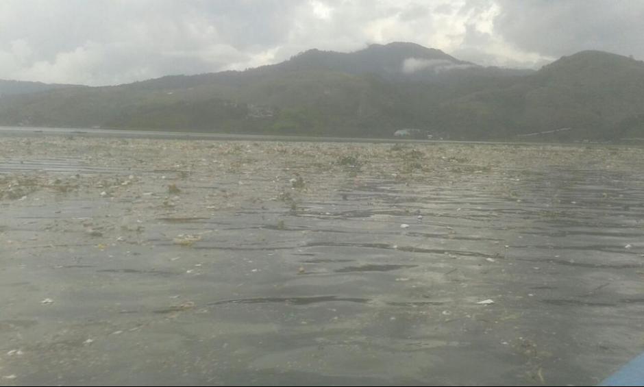 Personas rompieron la barda que detiene la basura que ingresa diariamente al Lago de Amatitlán. (Foto: Twitter, AMSA)