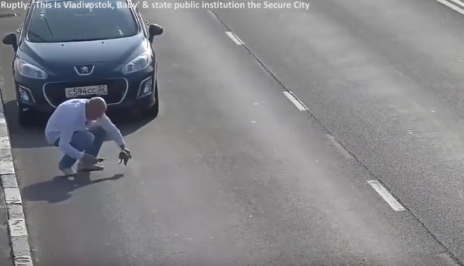 Este hombre detuvo su carro en plena autopista para recoger al cachorro y llevarlo a un lugar seguro. (Foto: Captura de video)