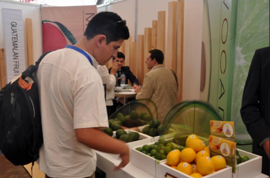 El sector de la agricultura es uno de los que más crece. (Foto: Archivo/Soy502)