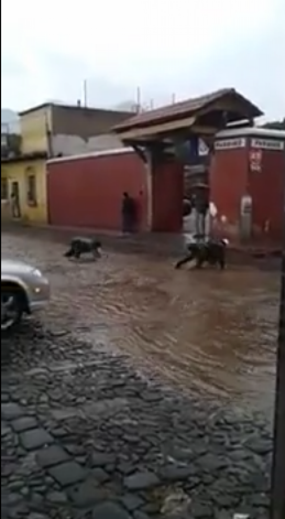 La diversión se acaba cuando un carro debe pasar por el lugar. (Foto: Captura Youtube)