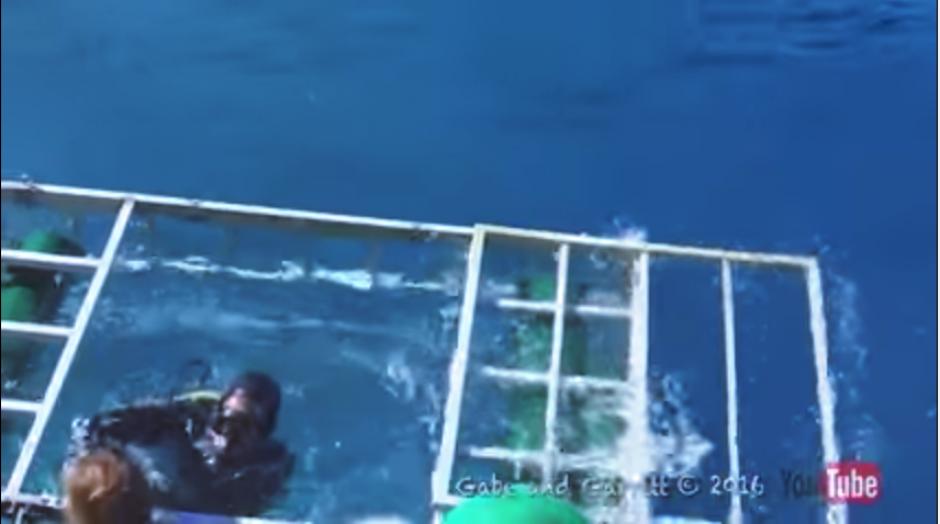 Finalmente, el hombre sale del agua, mientras los demás respiran tranquilos. (Captura Youtube)