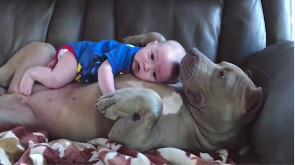 Belle abraza al pequeño con mucho cuidado y amor. (Imagen: captura de video)