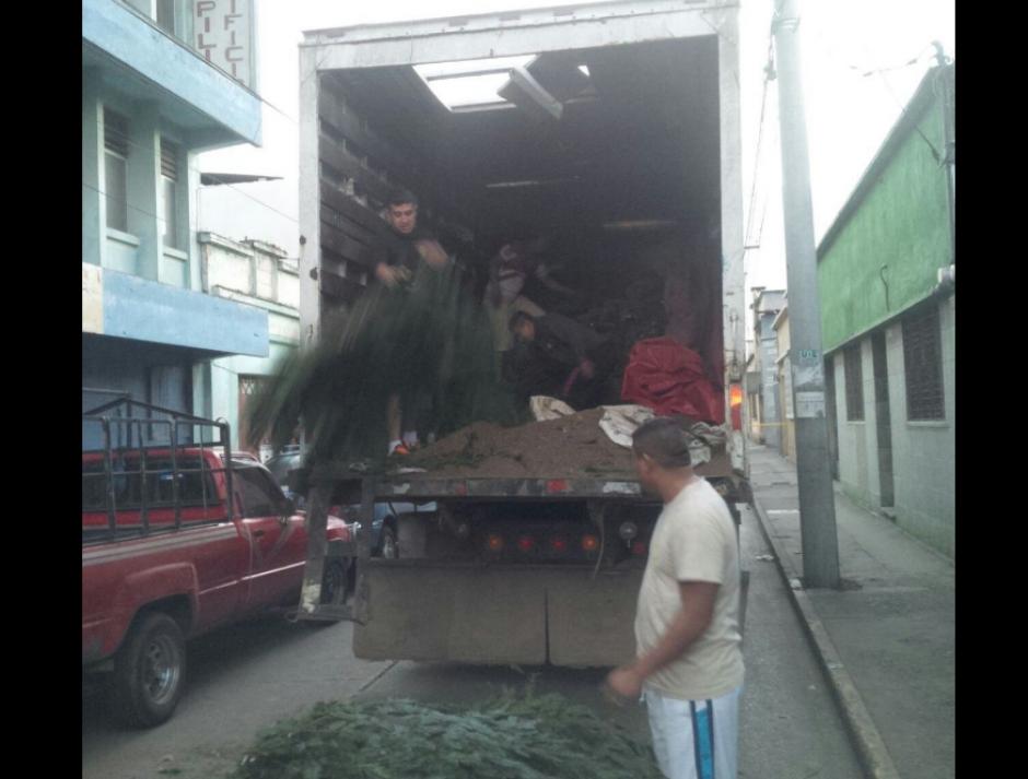 En otro operativo en zona 1 de la ciudad se decomisaron varias ramillas. (Foto: MP)