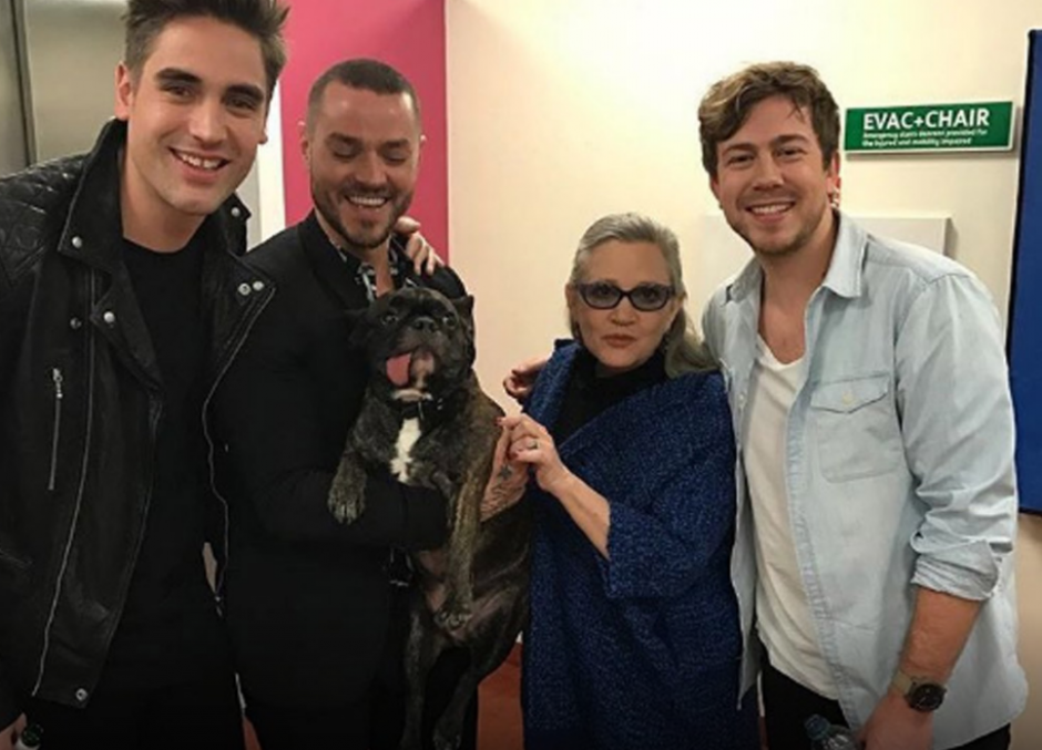 El perro ahora será parte de la familia de la actriz. (Foto: periodicocorreo.com.mx)