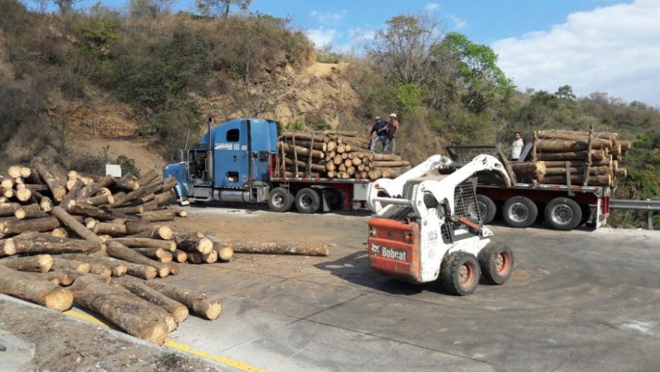 Las máquinas retiraron la madera de ambos lados del camino. (Foto: Provial/TránsitoPNC)