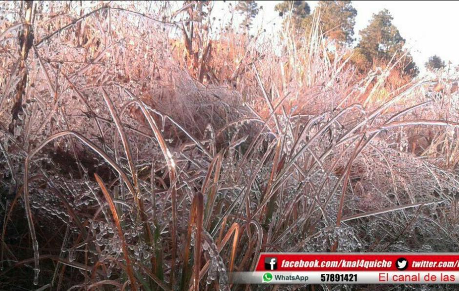 El frío en Totonicapán cubrió los campos de blanco. (Foto: Facebook/Knal 4 Quiché)