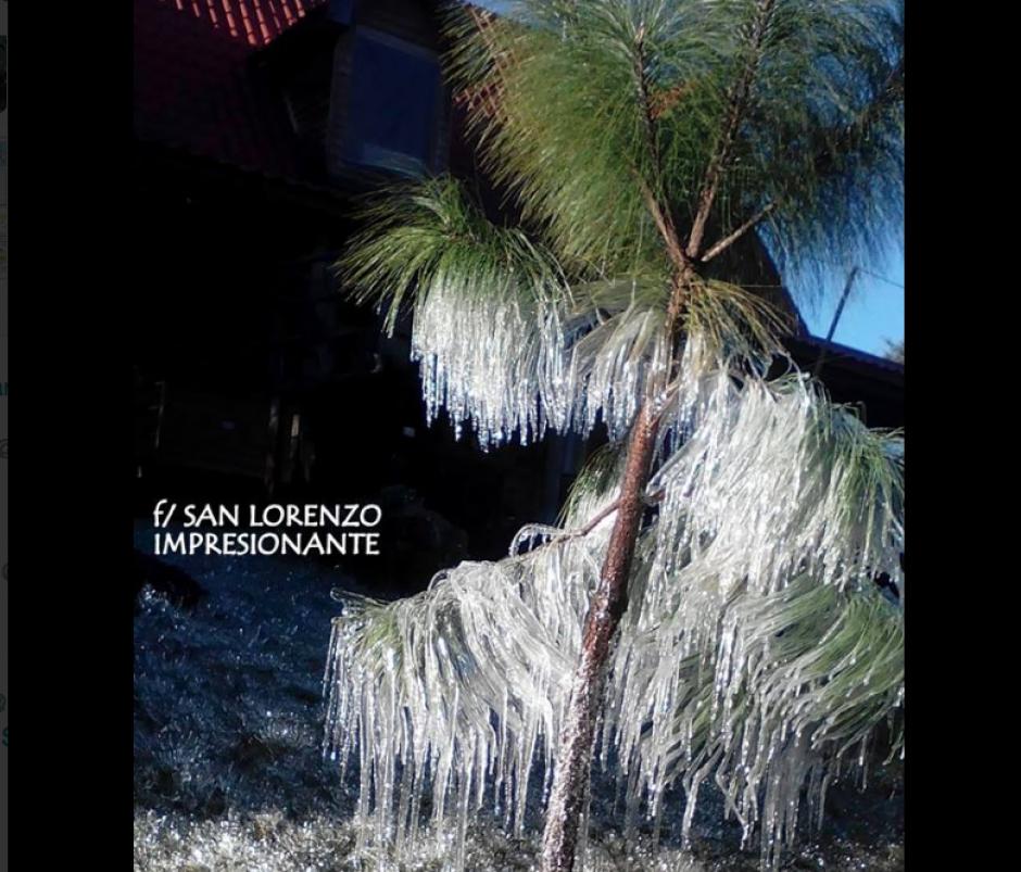 Las plantaciones se vieron cubiertas de hielo. (Foto: Maribel Aguilar/San Lorenzo Impresionante)