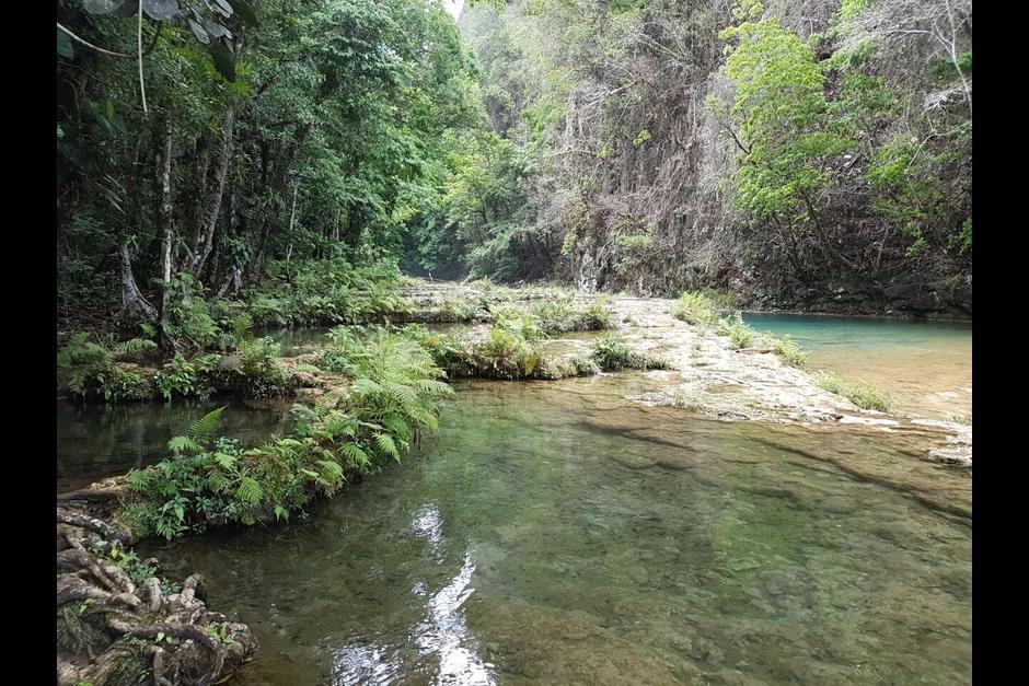 Este viernes 22 de julio se esperan los primeros grupos de visitantes a Semuc Champey. (Foto: Conap)