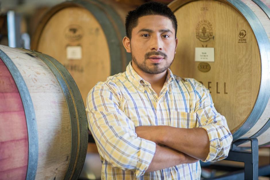 El guatemalteco Seferino Cotzojay es el encargado de la producción del vino  White Horse Winery. (Foto: Twitter)