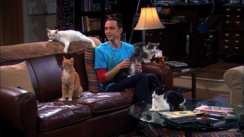 Sheldon no permite que nadie se siente en un espacio del sillón de la sala de su apartamento. (Foto: pinkman.mx