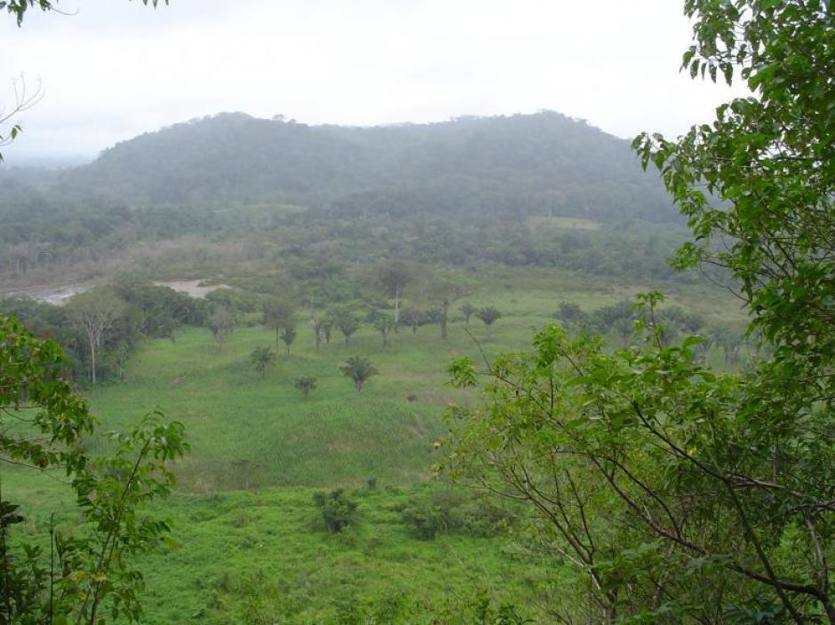 El entorno del sitio descubierto en Alta Verapaz.