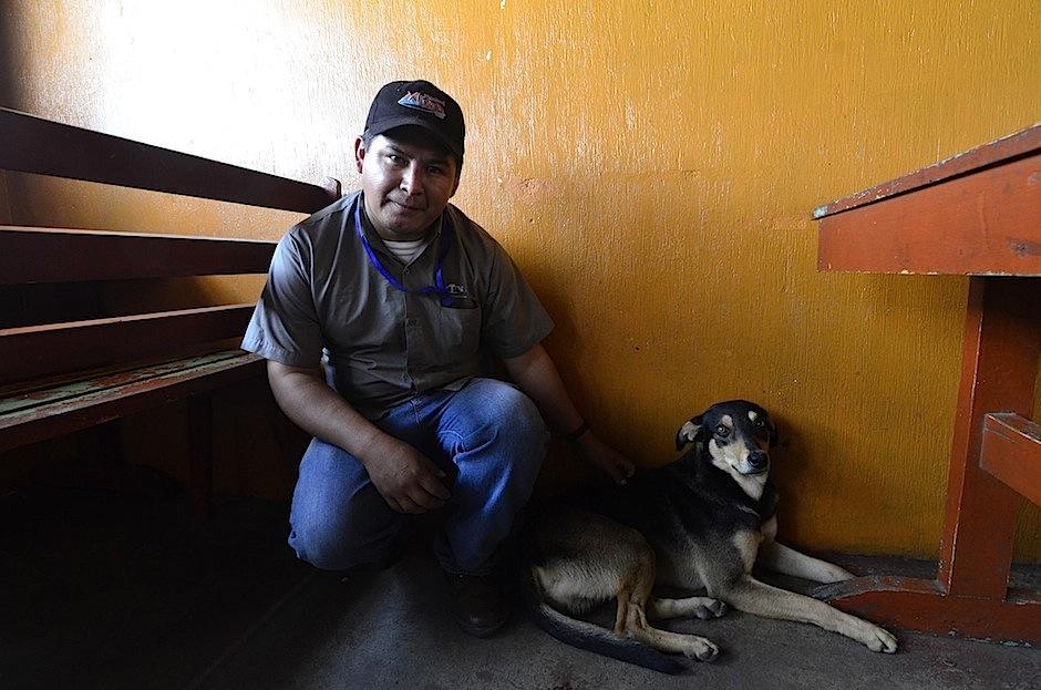 Desde que es cachorro todos lo cuidan y le dan de comer. (Foto: Selene Mejía/Soy502)